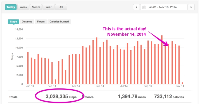 I missed the actual day I hit 3,000,000 steps. It was Friday, November 14